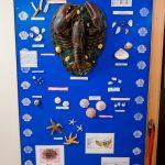 Northumberland shellfish